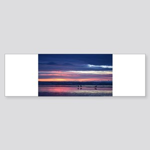 Seagull Sunset Sticker (Bumper)