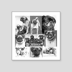 "Vintage Pugs Square Sticker 3"" x 3"""