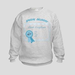 Special Delivery Kids Sweatshirt