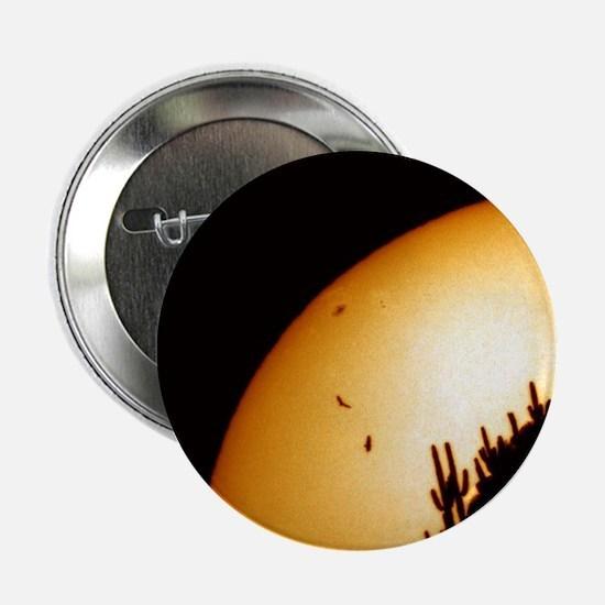 """Cactus and Buzzards Solar Image 2.25"""" Button"""