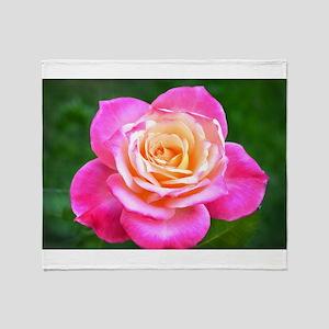 Pink Sunset Rose Throw Blanket