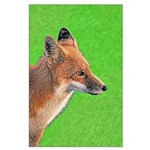 Red Fox Large Poster