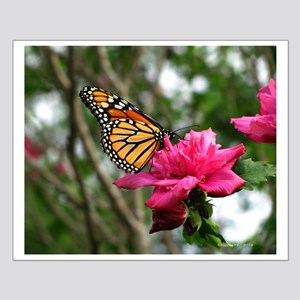 .monarch on althea. Small Poster