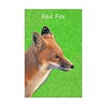 Red Fox Mini Poster Print