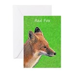 Red Fox Greeting Cards (Pk of 20)