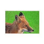 Red Fox Rectangle Magnet (100 pack)