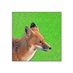 Red Fox Square Sticker 3