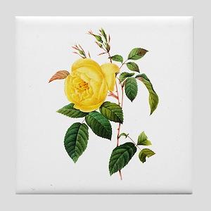 Pierre-Joseph Redoute Rose Tile Coaster