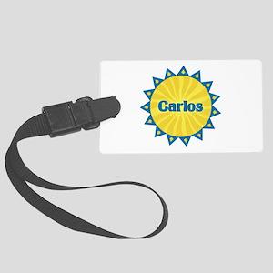 Carlos Sunburst Large Luggage Tag