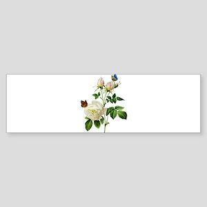 Pierre-Joseph Redoute Rose Sticker (Bumper)