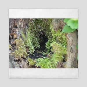 Mossy Glen Queen Duvet