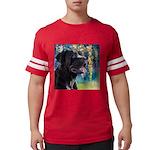 Cane Corso Painting Mens Football Shirt