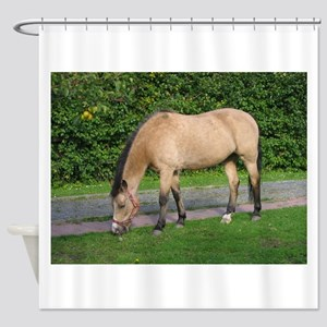 New Forest Pony Shower Curtain