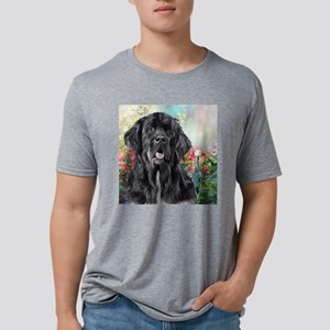 Newfoundland Painting Mens Tri-blend T-Shirt