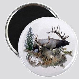 Buck deer bull elk Magnet