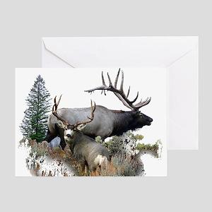 Buck deer bull elk Greeting Card