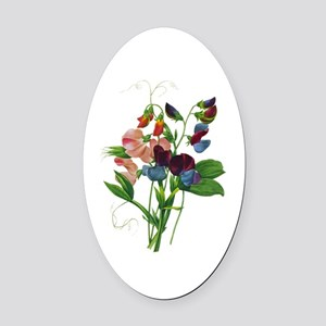 Pierre-Joseph Redoute Botanical Oval Car Magnet