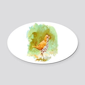 Wood Thrush Oval Car Magnet