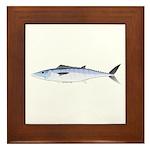 King Mackerel fish Framed Tile