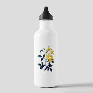 Pierre-Joseph Redoute Rose Stainless Water Bottle