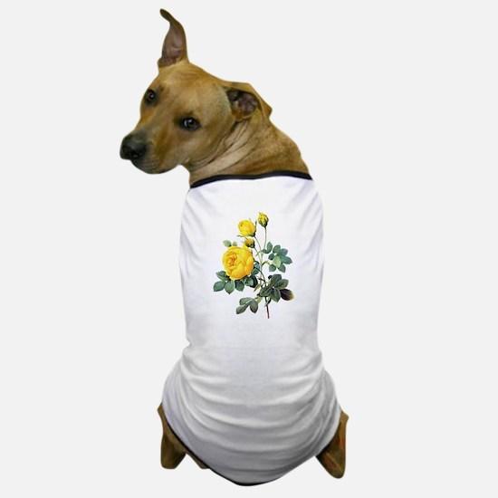 Pierre-Joseph Redoute Rose Dog T-Shirt