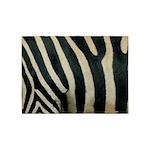 Zebra Safari Decor 5'x7'Area Rug