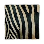 Zebra Safari Decor Queen Duvet