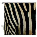 Zebra Safari Decor Shower Curtain