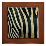 Zebra Safari Decor Framed Tile