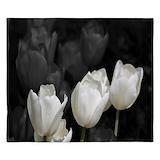 White tulip King