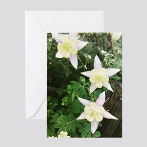 Columbines Greeting Cards