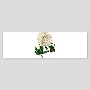 Pierre-Joseph Redoute Botanical Sticker (Bumper)