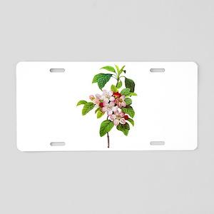 Pierre-Joseph Redoute Botanical Aluminum License P