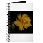Yellow rose and bud Journal