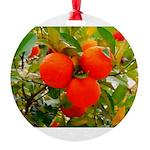 Neratze Round Ornament