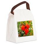 Neratze Canvas Lunch Bag