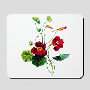 Pierre-Joseph Redoute Botanical Mousepad
