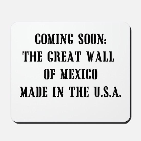 Wall of Mexico Mousepad
