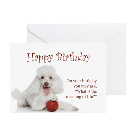 Funny poodle birthday card by shopdoggifts bookmarktalkfo Gallery