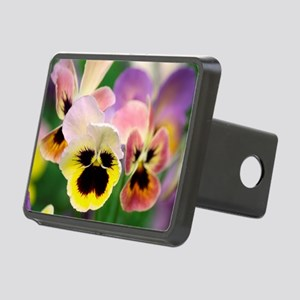 Pansies (Viola wittrockiana) - Hitch Cover