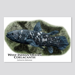 West Indian Ocean Coelacanth Postcards (Package of