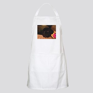 Would this face lie? Apron