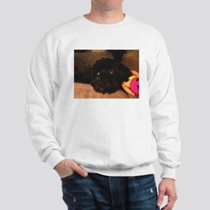 Would this face lie? Sweatshirt