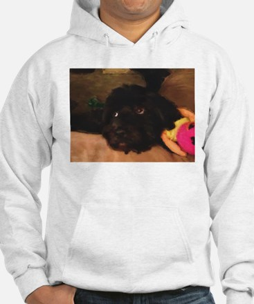 Would this face lie? Hoodie