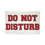 Do Not Disturb Rectangle Magnet