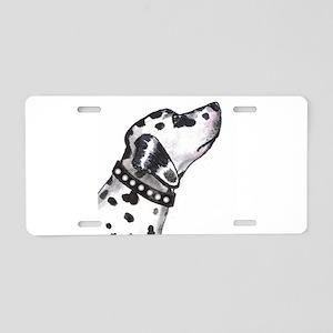 Spot Aluminum License Plate