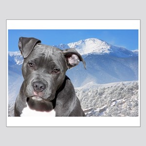 Blue American Pit Bull Terrier Puppy Dog Small Pos