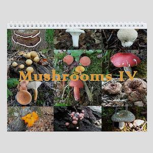 Eastern North America Mushrooms 4