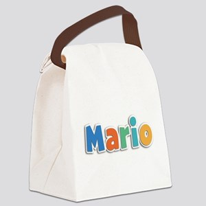 Mario Spring11B Canvas Lunch Bag