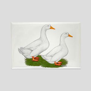 White Pekin Ducks 2 Rectangle Magnet